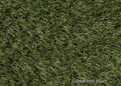 Rye - Foxtail