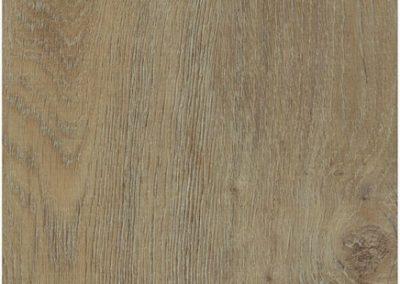 Woodlands - European Oak